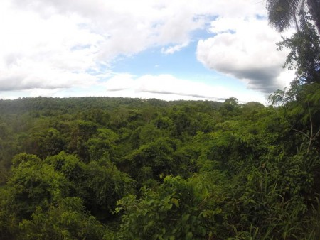 Igua_007