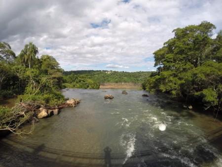 Igua_011a