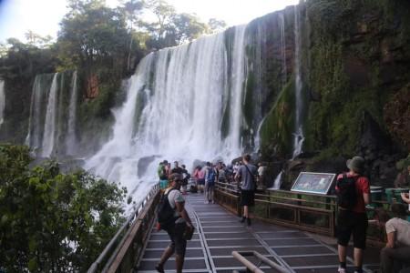 Igua_014