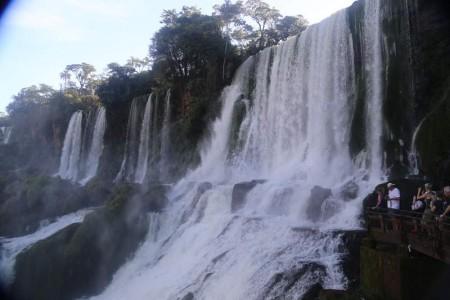 Igua_016