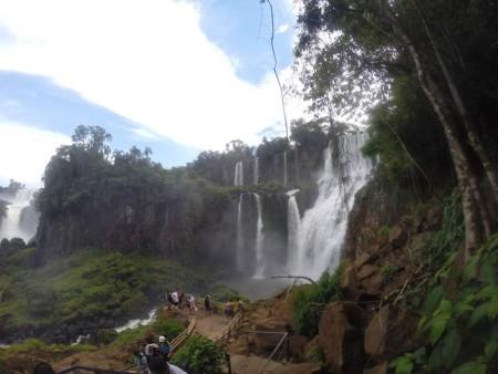 Igua_020