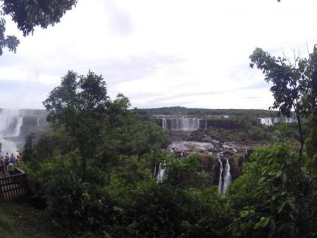 Igua_028