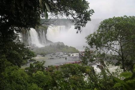 Igua_029