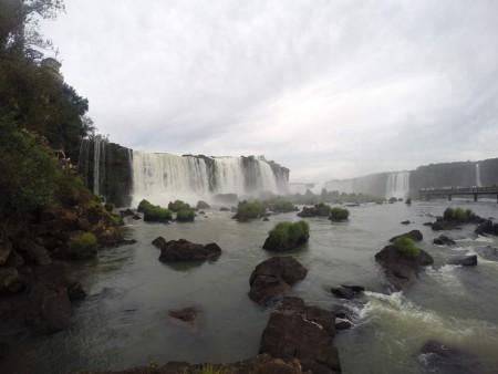 Igua_031