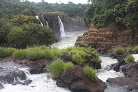 Igua_034