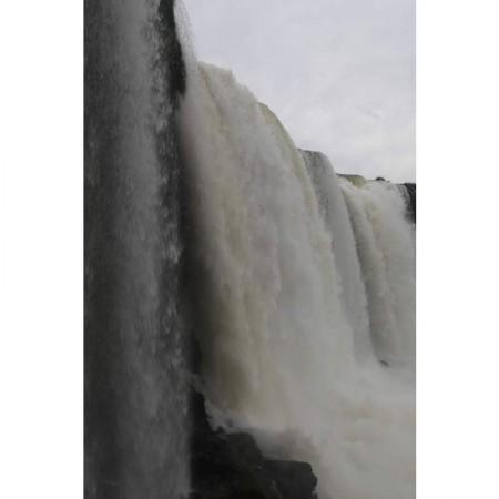 Igua_039