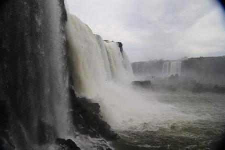 Igua_041