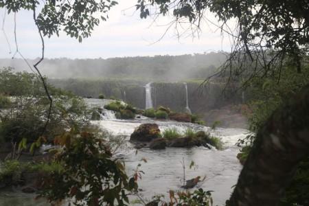 Igua_043