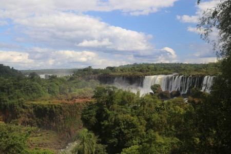 Igua_044
