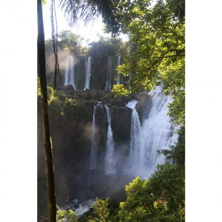 Igua_047