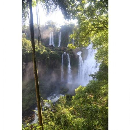 Igua_049