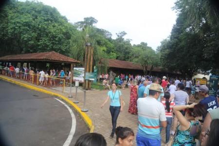 Igua_055